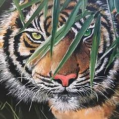 Intense Gaze size - by Pickie Arts Wildlife Paintings, Nature Paintings, Animal Paintings, Landscape Paintings, Madhubani Art, Madhubani Painting, Artwork Online, Online Painting, Selling Paintings