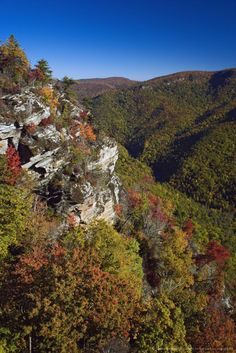 Image detail for -Early autumn view of Linville Gorge, often called the Grand Canyon of North Carolina, Pisgah National Forest, North Carolina, USA.