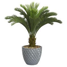 Laura Ashley Home Tall Cycas Palm Floor Tree in Planter & Reviews | Wayfair
