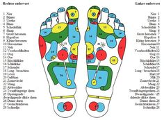 Tiptop Voetverzorging Hand Therapy, Massage Therapy, Nier 1, Foot Chart, Foot Reflexology, Muscle Anatomy, Foot Massage, Massage Room, Young Living Oils