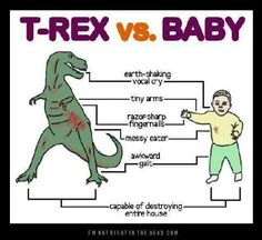 wanna make this a sign for our house lol    trex v baby