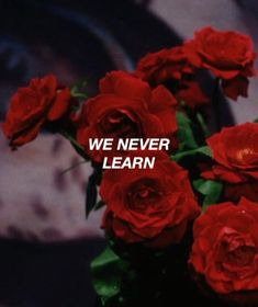 Sign of the Times - Harry Styles Red Red Aesthetic, Quote Aesthetic, Sign Of The Times Harry Styles, Vampire Academy, Red Roses, We Heart It, Love Quotes, Teenagers, Photos