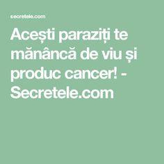 Acești paraziți te mănâncă de viu și produc cancer! - Secretele.com
