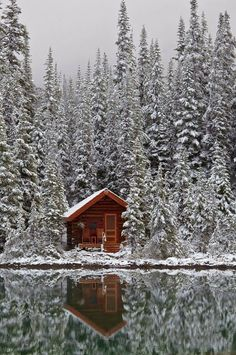 Coolest Cabins: October 2013 - Cabin on Lake O'Hara, Alberta, Canada. Many more amazing cabins at the link...