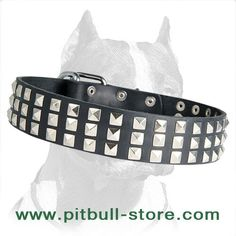 Collar Leather Collar, Bracelets, Jewelry, Fashion, Moda, Leather Necklace, Jewels, Fashion Styles, Schmuck