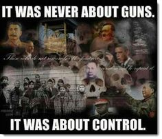 Government, gun control, holocaust