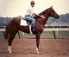 Secretariat. The greatest racehorse that ever lived.