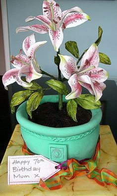 Potted lily cake