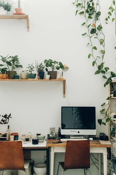 creative plant-filled work space. / sfgirlbybay