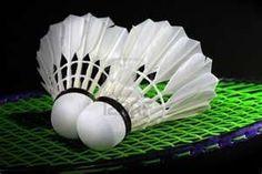 Callm 12 Pack Badminton Shuttlecocks Feather Birdies Shuttlecock Badminton Family Student Exercise for Indoor /& Outdoor Sports Activities