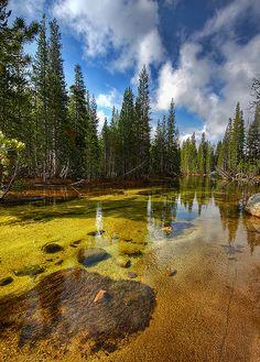 The High Sierra's Tenaya Lake, Yosemite National Park, California