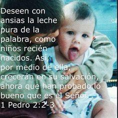1 Pedro 2:2-2 #ConAnsias #LikeANewBorn #Crave #GrowingUp Growing Up, Face, New Born Girl, Newborns, Bible, Words, The Face, Faces, Facial