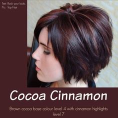 Cinnamon highlights on dark brown base color. Gorgeous!