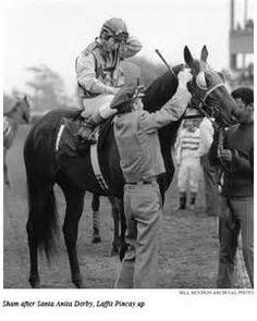 Sham after 1973 Santa Anita Derby