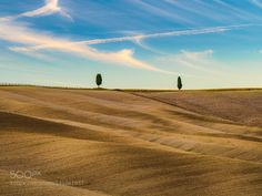 Different twins by blazblue78. Please Like http://fb.me/go4photos and Follow @go4fotos Thank You. :-)