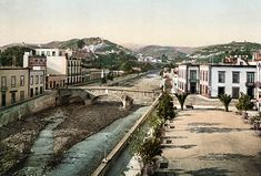 Tenerife, Santa Ana, Canario, Railroad Tracks, Gardens, The World, Vintage, Antique Photos, Islands