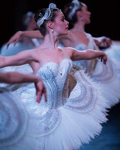 Swan Lake 2016 | The Australian Ballet