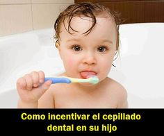 Como incentivar el cepillado dental en su hijo   OdontoBebé