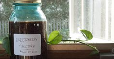 The most important weapon against influenza that you can add to your herbal arsenal is elderberry extract. Whether you are concerned with the seasonal flu or the potential of a deadly strain of influenza becoming...