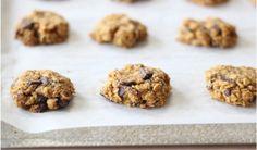 Health Warrior's Thanksgiving Pumpkin Oatmeal Chocolate Cookies Recipe
