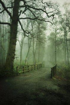 Balloch Castle Country Park, Dunbartonshire, Scotland