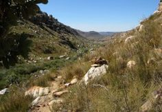Things To Do in Cederberg Search Results Page 2