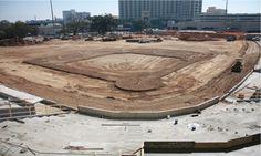 The field is taking shape! 2/14/15