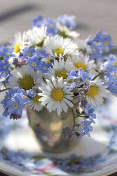 Hard to call this arranged. Crisp white daisies and forget-me-nits