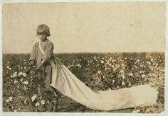 5000+ Child Labour Pictures by Lewis Hine | Norma Lawrence is 10 years old and picks from 100 to 150 pounds of cotton a day.