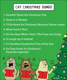 89 best Christmas funnies images on Pinterest   Christmas humor ...