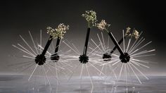 A Vase That Serves As A Root System For Flowers