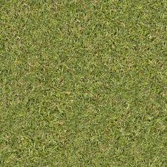 textura grama