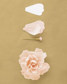 """See the """"Peony"""" in our How to Make Crepe-Paper Flowers gallery"""