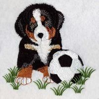 OregonPatchWorks.com - Sets - Bernese Mountain Dog 2