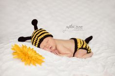 Justine Renee Photography  Bumblebee outifit from Etsy