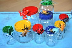Magnetic Bug Jars for Storage