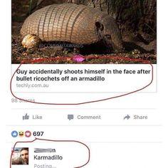 Karmadillo