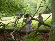 Wat moeten kinderen voor hun 12e in de natuur gedaan hebben. foto @natuurkind