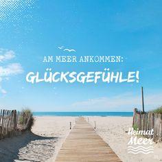 Wer kann das bestätigen?! Für alle, die das Meer lieben - Unsere neuen 'MEER' Shirts: ►www.heimatmeer.de/klamotte/t-shirts-tops?p=1&o=1