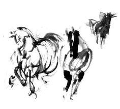 horses / by kasia dippel