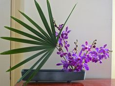 All sizes   Ikebana with purple orchids   Flickr - Photo Sharing!