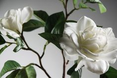 This tall silk gardenia stem is designed with attention to detail. The Silk White Gardenias will compliment modern cottage decorative schemes, or will add elegant detail to your Easter brunch. The silk fl Gardenias, Save On Crafts, Decor Ideas, Silk, Bathroom, Rose, Floral, Nature, Flowers