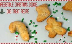 Easy DIY Holiday Treats Recipe To Give Your Pup A Christmas Feast