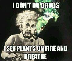 Memes - Drugs