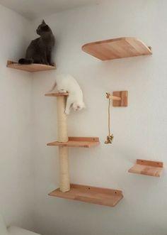 Pet Dogs, Dog Cat, Pets, Cat Tree House, Diy Cat Tree, Cat Playground, Mama Cat, Dog Furniture, Cat Room