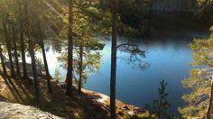 Only an hour away from Helsinki downtown, Nuuksio National Park offers tranquility and lets one find his inner calm.