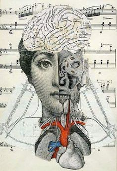 strings, umbilical, veins, music theoryby Crafty Dogma