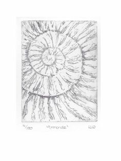 Etching no.4 of an ammonite fossil in an edition of 100 £30.00
