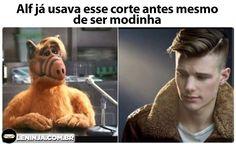 Alf kkkkkk