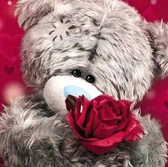 Florynda del Sol ღ☀¨✿ ¸.ღ Anche gli Orsetti hanno un'anima…♥ Teddy Images, Teddy Pictures, Tatty Teddy, Teddy Beer, Valentines Day Teddy Bear, Animals And Pets, Cute Animals, Valentine Picture, Angel Wallpaper